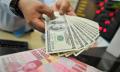Rupiah Dibuka Stagnan di Level Rp14.060/US$